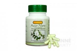 AYUR NERV - proti stresu